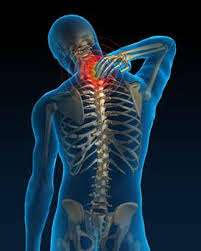skeletal body experiencing neck pain